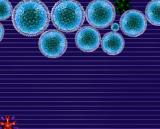 Флеш игра вирус
