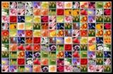 Маджонг цветочная страна  онлайн